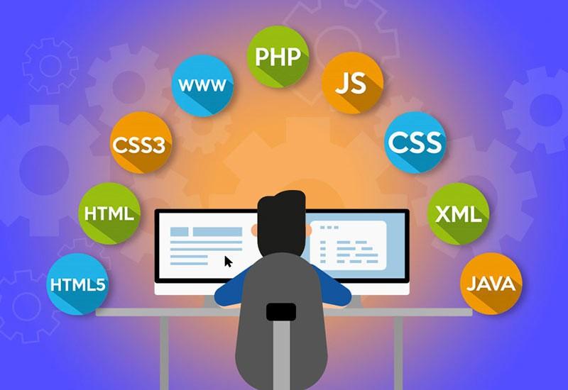 چگونه طراح وب سایت شویم